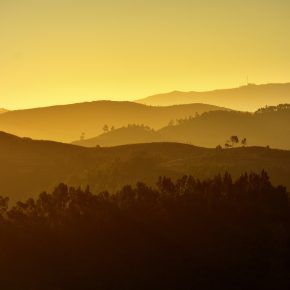 M_W50_Morning light - Rui Manuel Oliveira Moura - Portugal