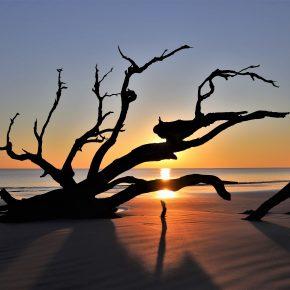M_W50_Sunrise at JeKyll Island - Diane Richard - Canada
